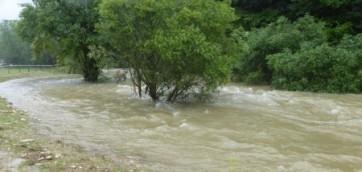 Fin juillet, toujours de l'eau !