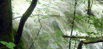 Décidément, il pleut…