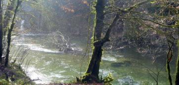 Un automne et début hiver humide…